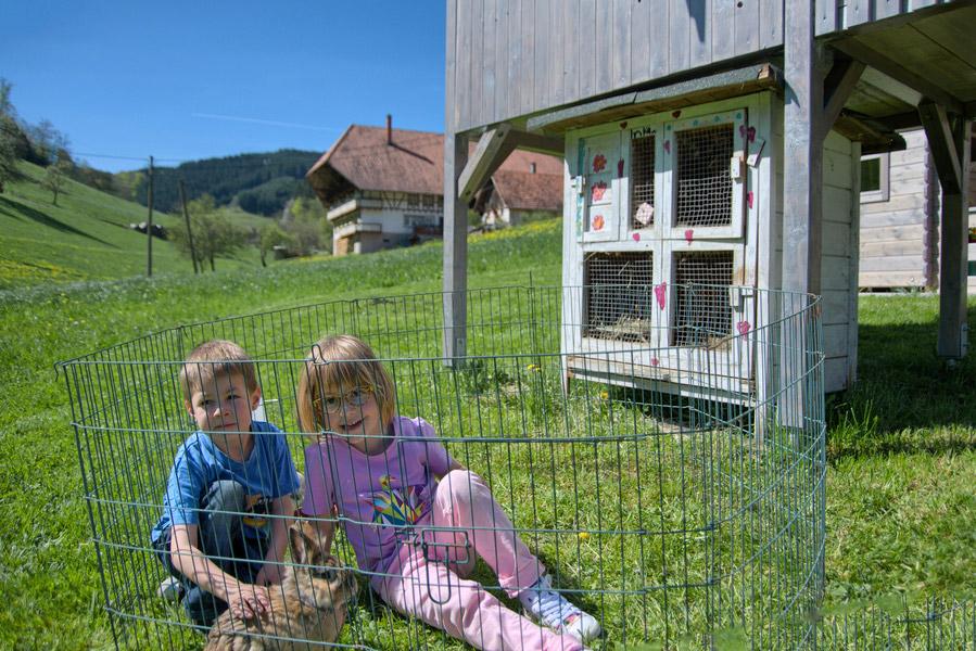 Sternenhimmel Le appartement 1 vacances à la ferme mühlenbach forêt allemagne